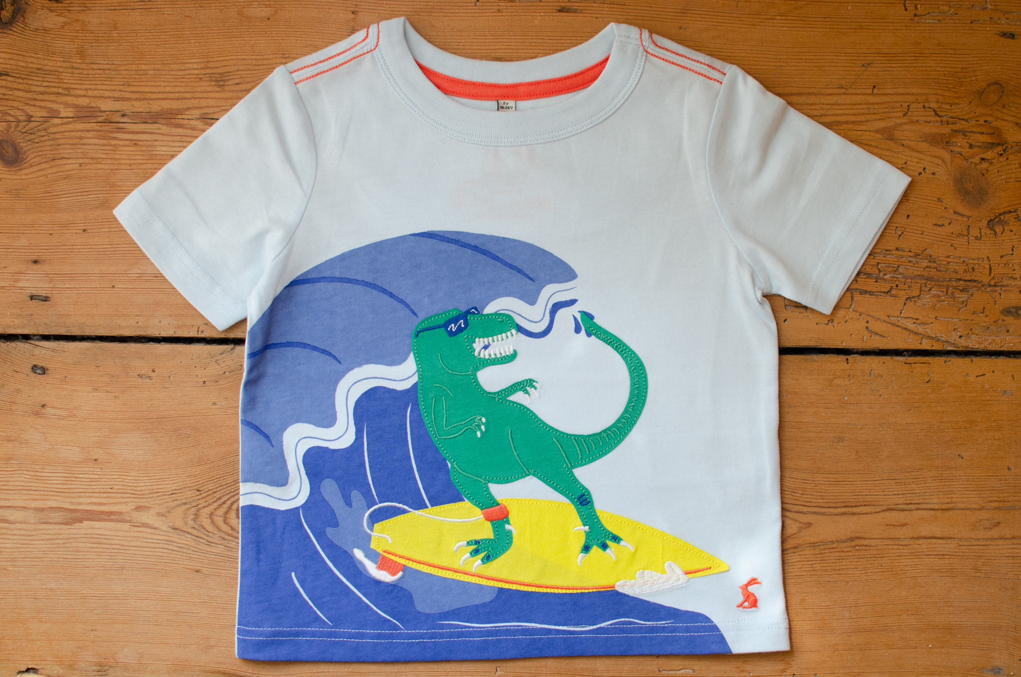 Surfing Dinosaur by Elly Jahnz for Joules