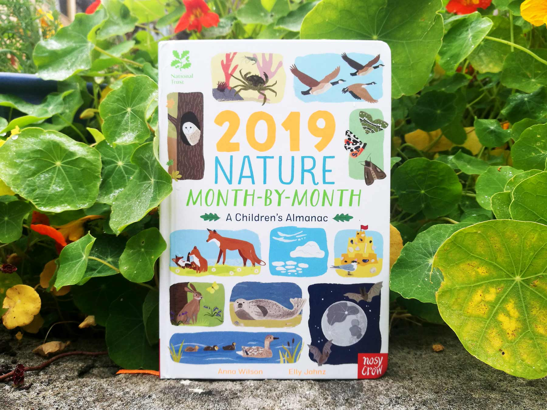 2019 Nature Month by Month published by Nosy Crow and illustrated by Elly Jahnz