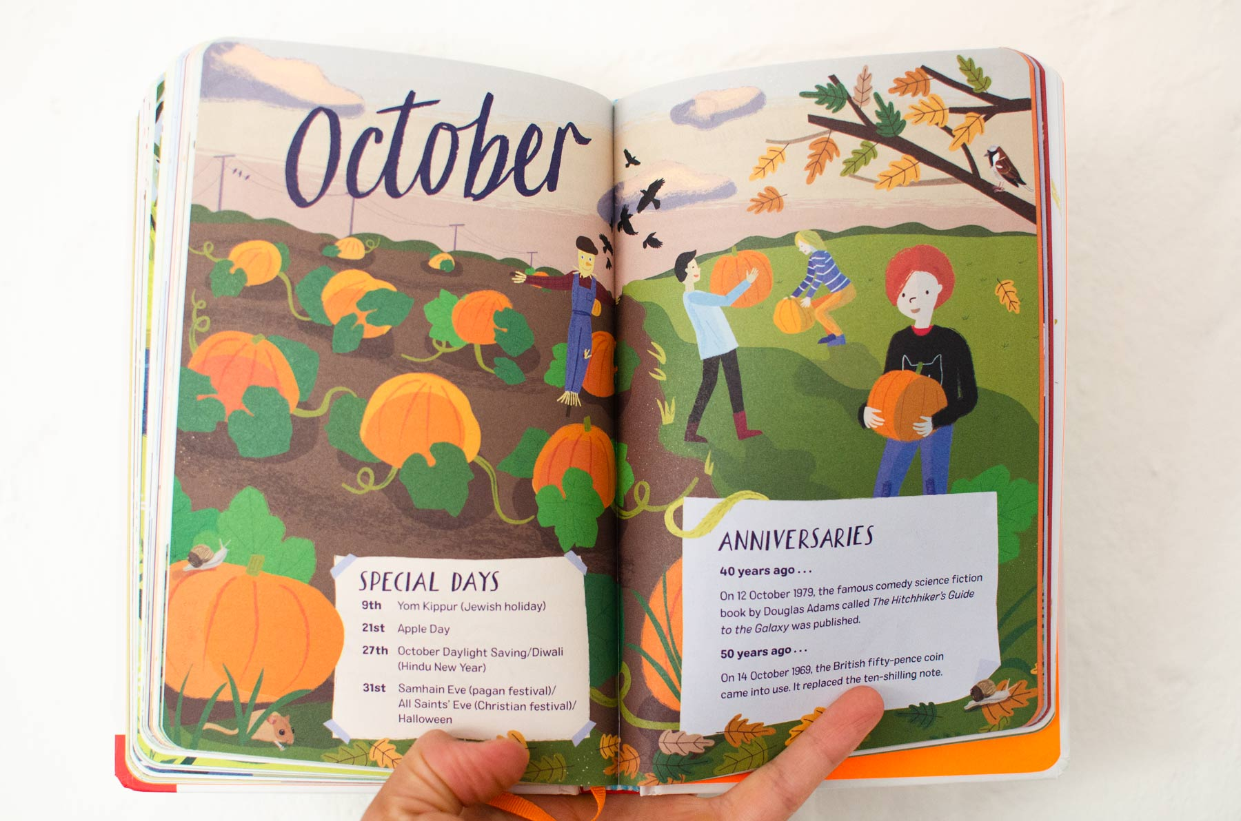 Double page spread from 2019: Nature Month by Month illustrated by Elly Jahnz.
